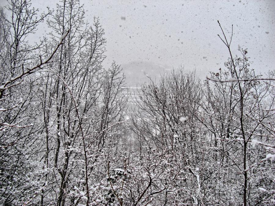 1вид снег