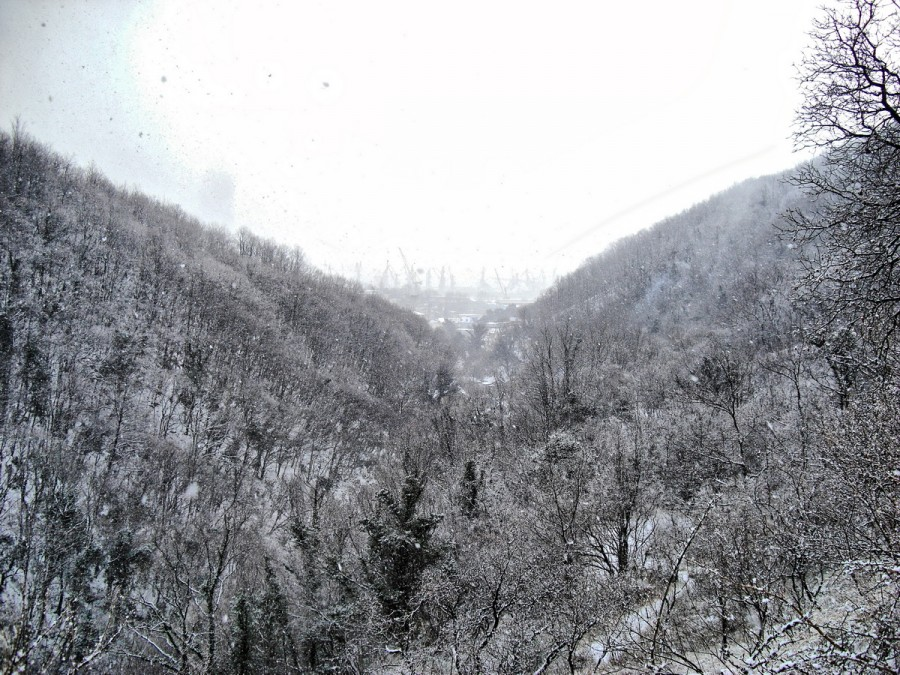 1вид снег2