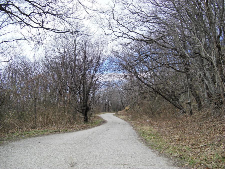 Дорога на Кадоше