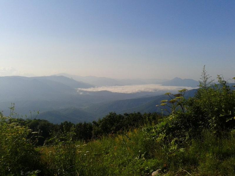 Туапсинский район гора Почепсуха