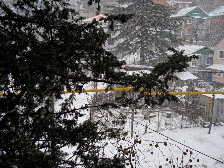 Туапсе снег Новый год