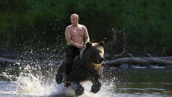 Евро футбол Россия Путин