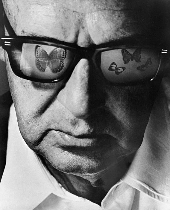Philippe Halsman (1906 – 1979) Portrait of Vladimir Nabokov, Switzerland, Montreux, circa 1968.