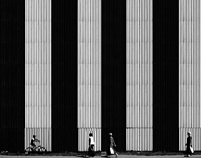 Shadow_19
