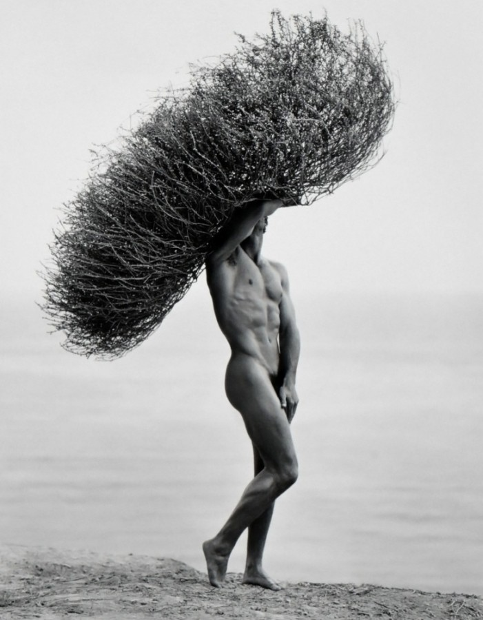 Male Nude with Tumbleweed by Herb Ritts, 1986
