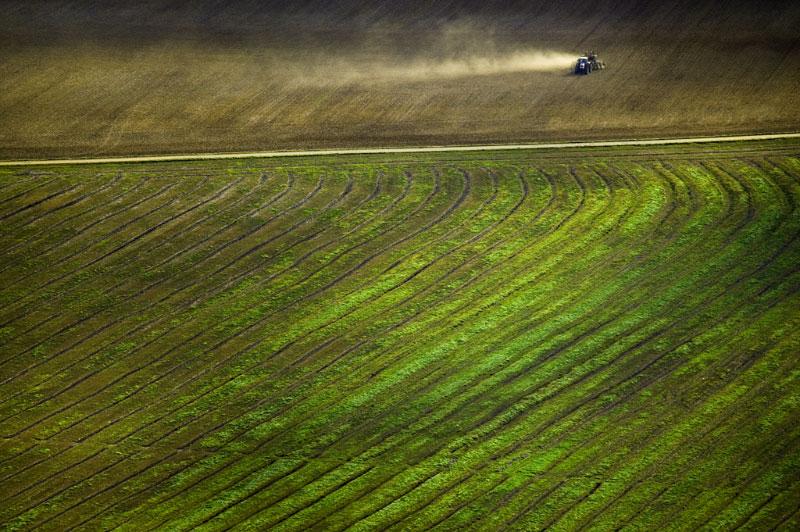italian_landscape_3 ALEX MACLEAN