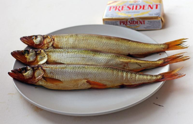 2014-05-04_fish-quasi-korushka
