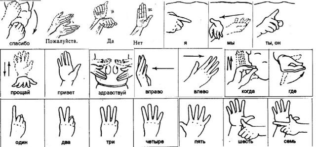 буквы в картинках обучение