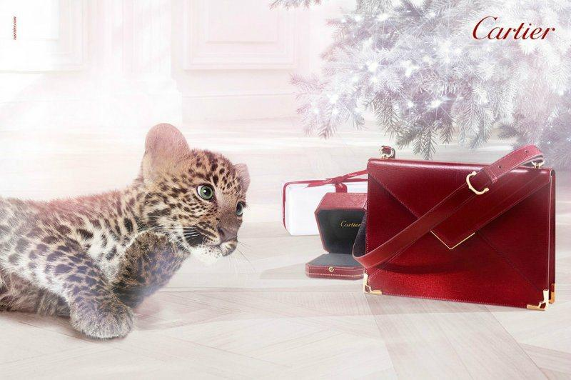 cartier-winter-tale-campaign-for-christmas-20-L-fFHCp8