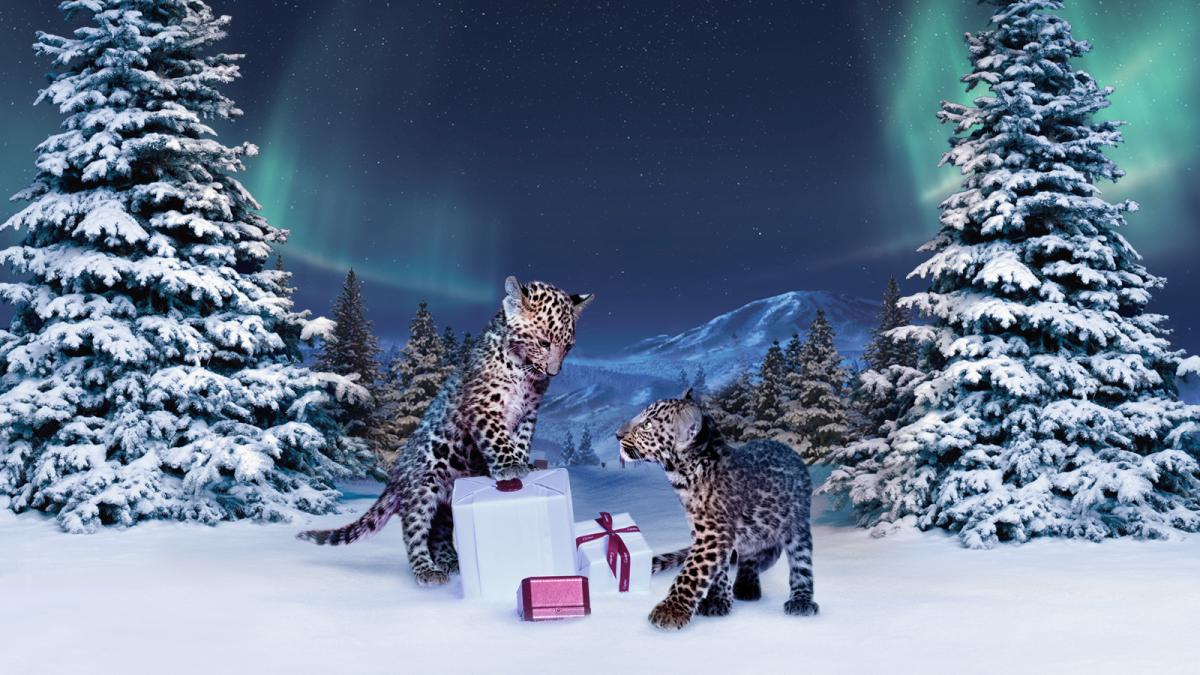Cartier_Winter_Tale_Holiday_Campaign_01