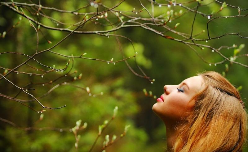 fragancia-naturaleza-aroma-natural