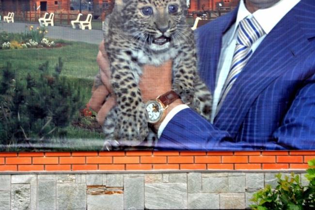 часы, политика, скандал, зоопарк, удмуртия