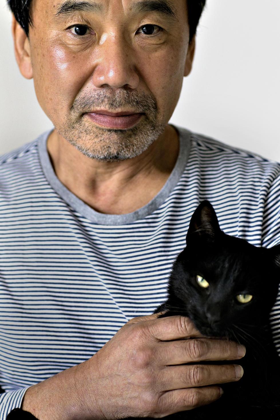 Харуки Мураками, котик