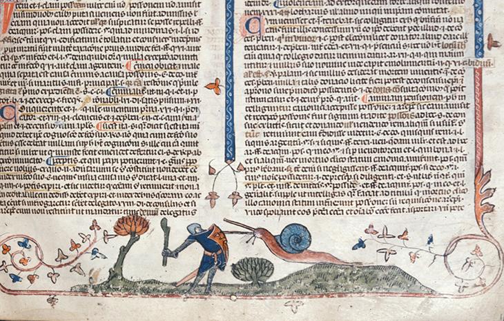 улитка, рыцарь, средневековье, рукопись