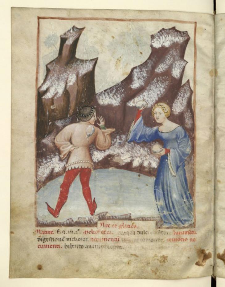 Tacuinum-Sanitatis, снежки, средневековье