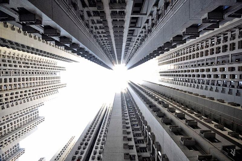 Romain Jacquet-Lagreze, Vertical Horizon