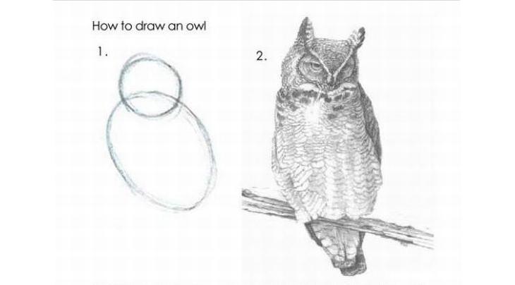 как рисовать сову