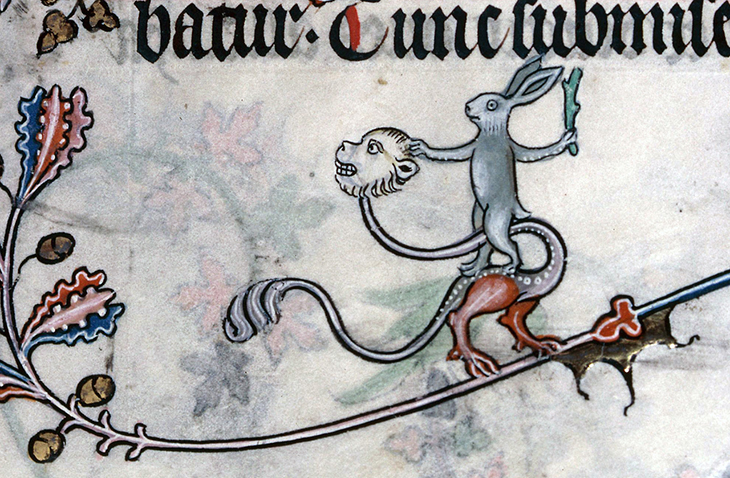 hare on a demon