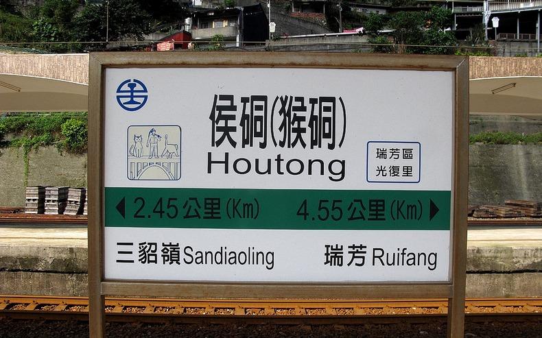 Houtong1
