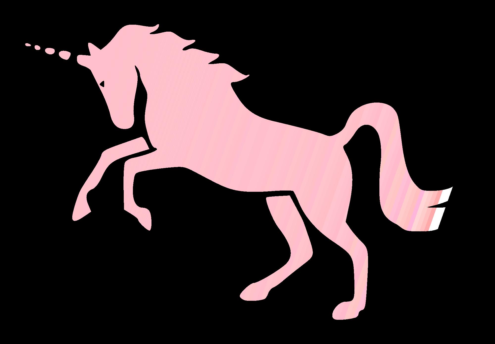 Invisible_Pink_Unicorn