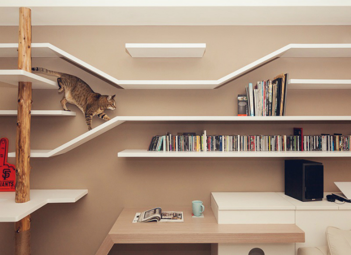 Купить квартиру, поселить в ней котика и не отчаиваться