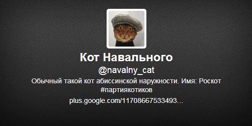 Кот Навального, твиттер, политическая сатира