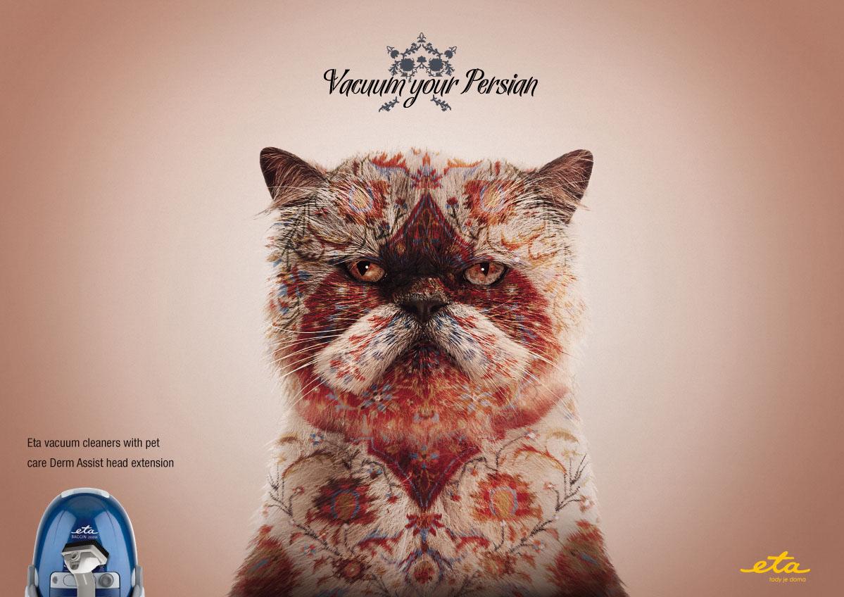 Котики в рекламе
