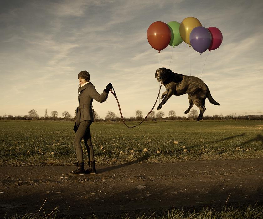Эрик Йоханссон, фотография, ретуширование, ленивая собака