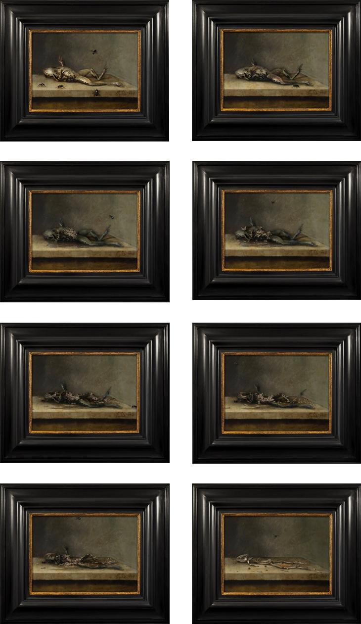 «Мёртвая лягушка и мухи» — статичные фрагменты инсталляции
