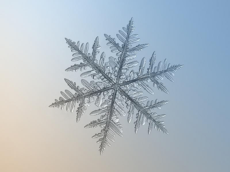 Макросъемка снежинок
