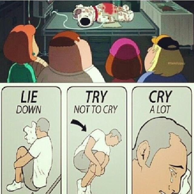 Лечь навзничь. Постараться не плакать. Всё равно плакать.