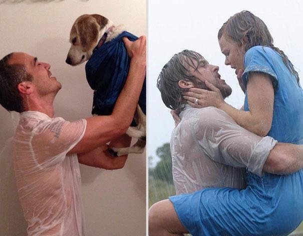 Собака заменила женщину