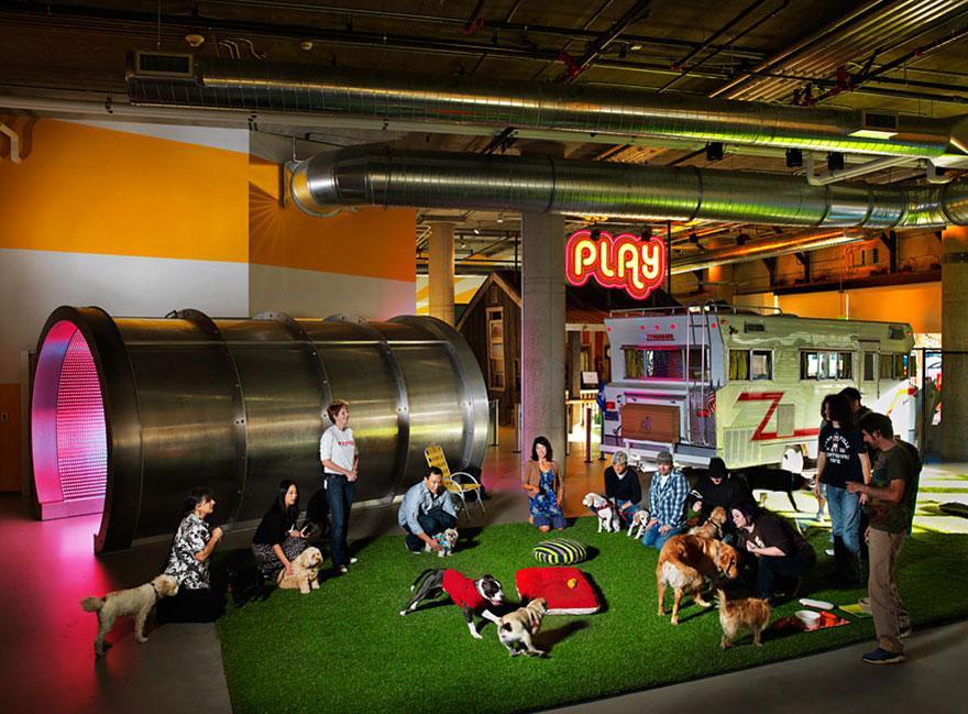 10 самых крутых офисов
