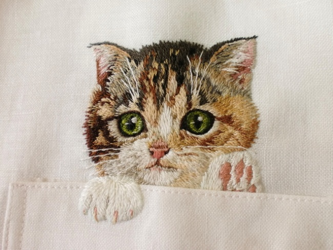 Котики в кармане