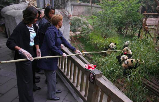 Первая леди США заигрывает с китайскими пандами