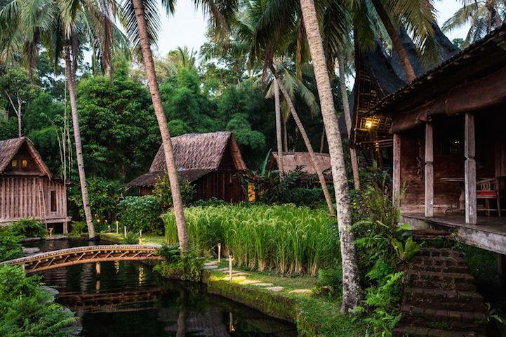 bambuindah13