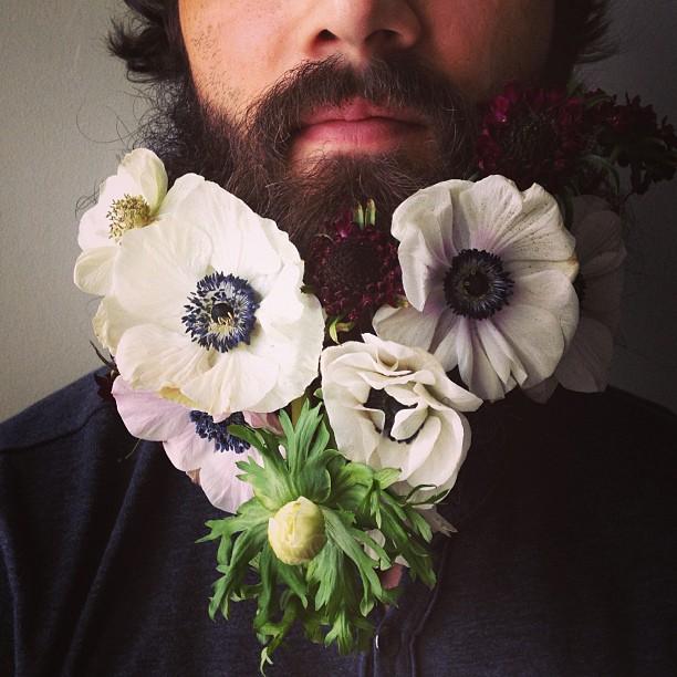 sarah-winward-flower-beard