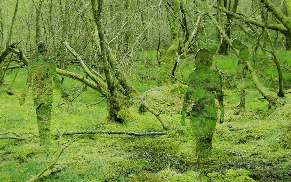 Лесные скульптуры-привидения