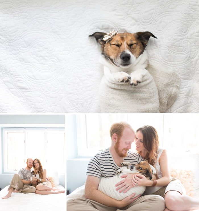dog-baby-photos-snuggles-count-it-joy-jamie-clauss-coverimage3
