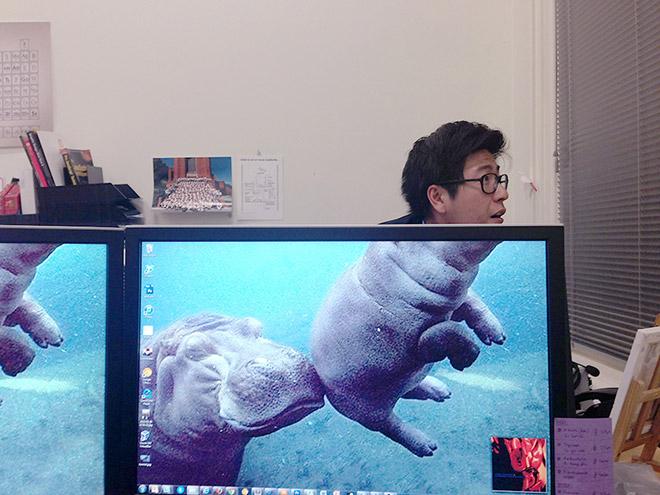 Новое офисное развлечение - Desk Safari
