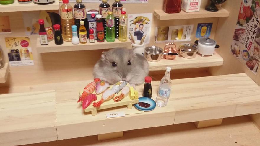 hamster-bartender-miniature-bar-kawanabesatou-3
