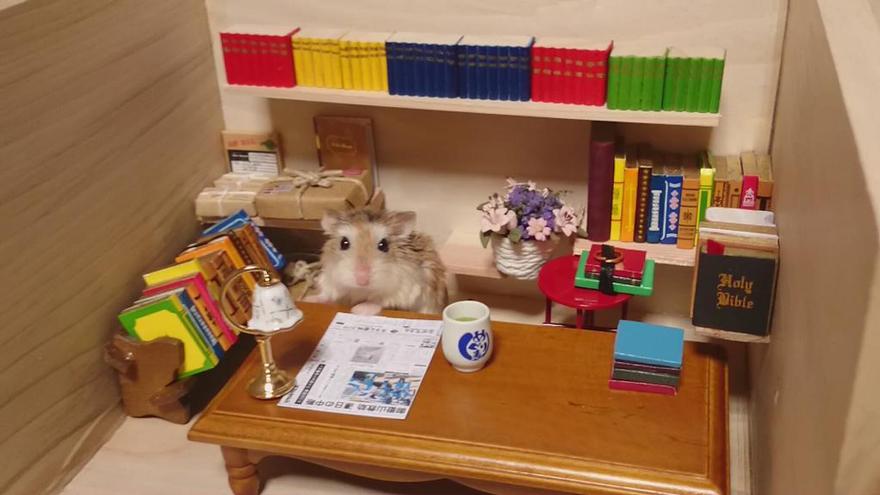 hamster-bartender-miniature-bar-kawanabesatou-9