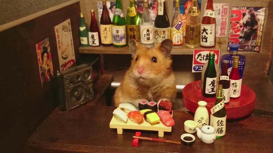 hamster-bartender-miniature-bar-kawanabesatou-13