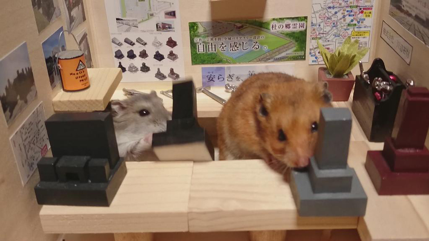 hamster-bartender-miniature-bar-kawanabesatou-16