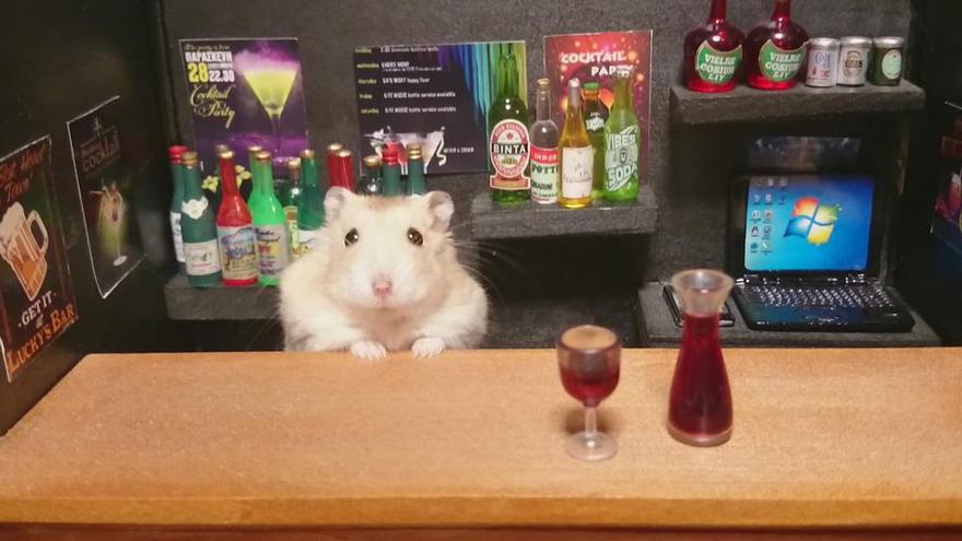 hamster-bartender-miniature-bar-kawanabesatou-22