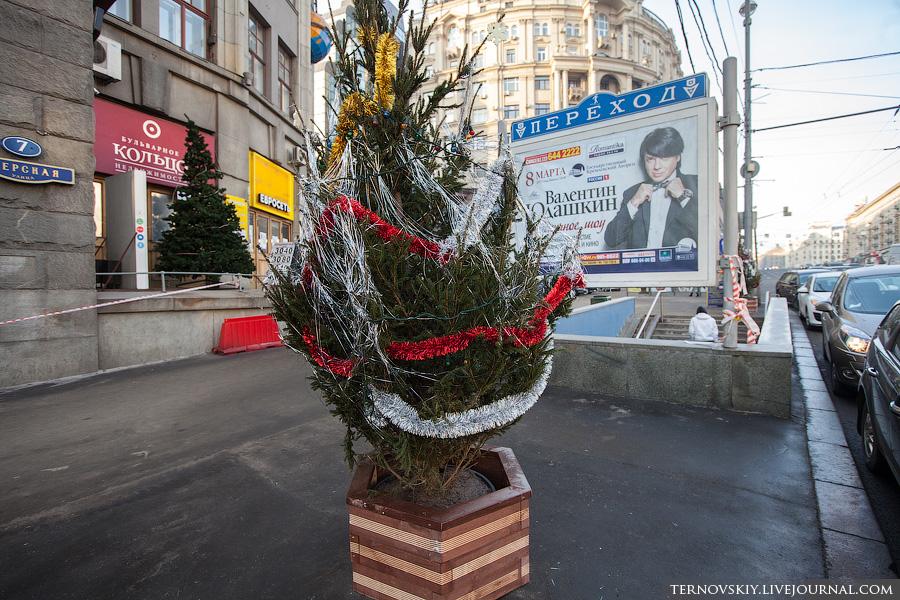 Москва, москва, елки, новый год, ад