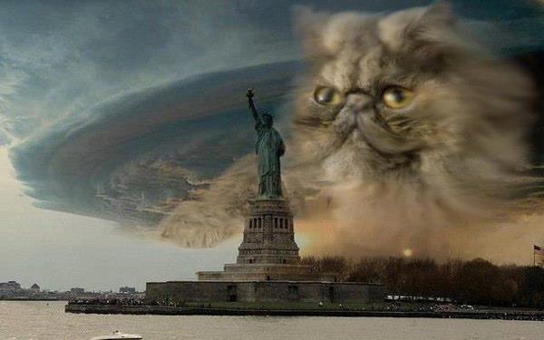 ураган сэнди, ураган сэнди смешное
