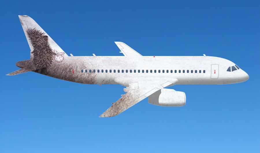 самолет, конкурс, аэрофлот