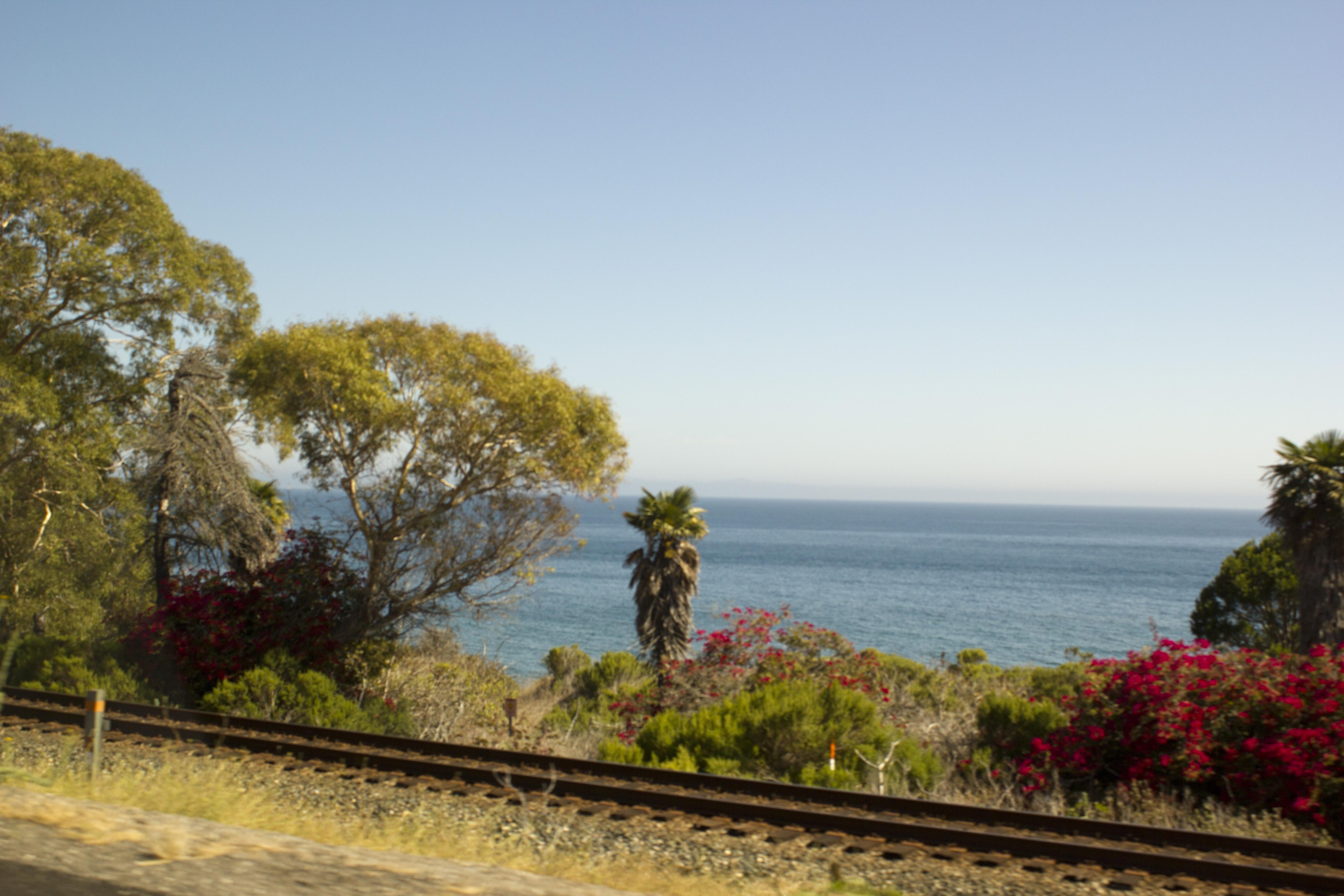 1_road97Фото из авто по дороге №1 из Сан-Франциско в Санта Барбару