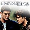 Never desert